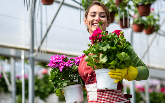 Woman with potted plants in hand